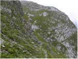 bavsica - Plešivec (Loška stena)