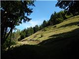 Možjanca - zapecnikova_planina