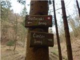 Sotina - sotinski_breg_kugla