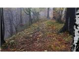 Tomšičeva  cesta (Jesenice) - jelenkamen