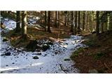 Pri Žagi (Javorniški Rovt)  - planina_stamare