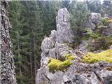 Brdo (Plezališče pod Golico)