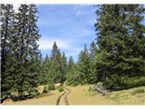 Lovrenc na Pohorju - lovrenska_jezera