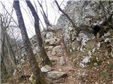 Velika Zaka (Bled)  - mala_osojnica