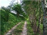 Pot po Svečinskih goricahVodi me zelena pot ...