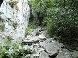Cvetlin - ravna_gora
