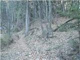 pivola - Mariborska koča mountain hut