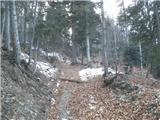 Ruše - zigartov_vrh