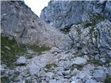 Logarski kot - rjavcki_vrh_planinsca