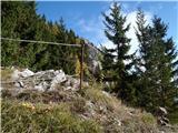 Planinska Ravna - Javorca (Golte)