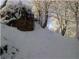 Mehovski hrib