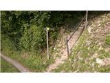 sentilj_v_slovenskih_goricah - Plački vrh