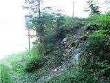 Vitanje - stenica