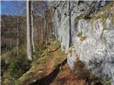 Gozdec - Veliki Babanski Skedenj