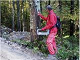 Trdinova pot v Kočevskem rogu temeljito obnovljenaObnova markacij na Trdinovi poti. Foto Mladen Živković.