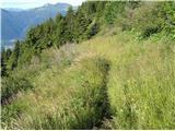Monte Paularo in Monte Dimonstezica
