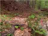 Jesenice (Ukova) - spanov_vrh