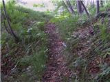Straža (Jesenice) - jelenkamen