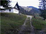 Rogarjev rovt - hruska_planina