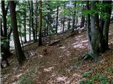 Kočna - planina_obranica