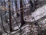 Jesenice (Straža) - spanov_vrh