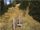 Rogarjev rovt - hruski_vrh