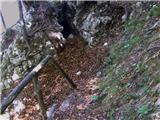 Podmežakla (Jesenice) - partizanska_bolnisnica_na_mezakli