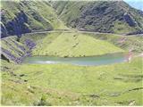 Monte Paularo in Monte Dimonkoliko živine
