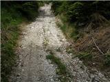 Spodnje Gorje - planina_obranica