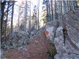 Creta di Rio Secco (2203)ko se gozdna cesta konča, se nadaljujej steza označena z oranžnimi pikami