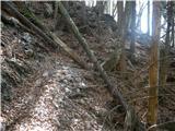 kraljev_hrib - Gradišče (Velika planina)