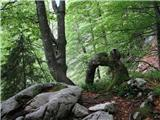 Umetnina narave
