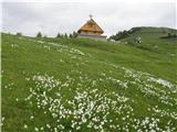 Planina Dovška Rožca