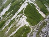 Erjavčev Rovt - gubno