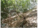 Pot, markacije na skalah in s skalo podprta bukev.