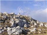 Ratitovecna Kosmatem vrhu ni niti ene krpice snega