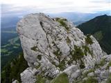 Gozd - storzic