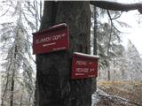 Slavkom dom na Golem brdu - sveta_katarina_topol